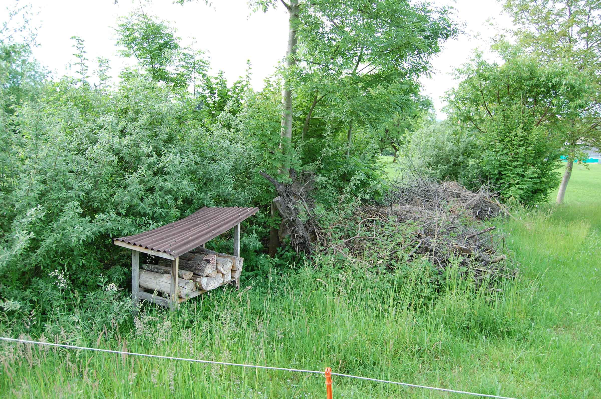Rundweg Heckenlandschaft Feusisberg_4