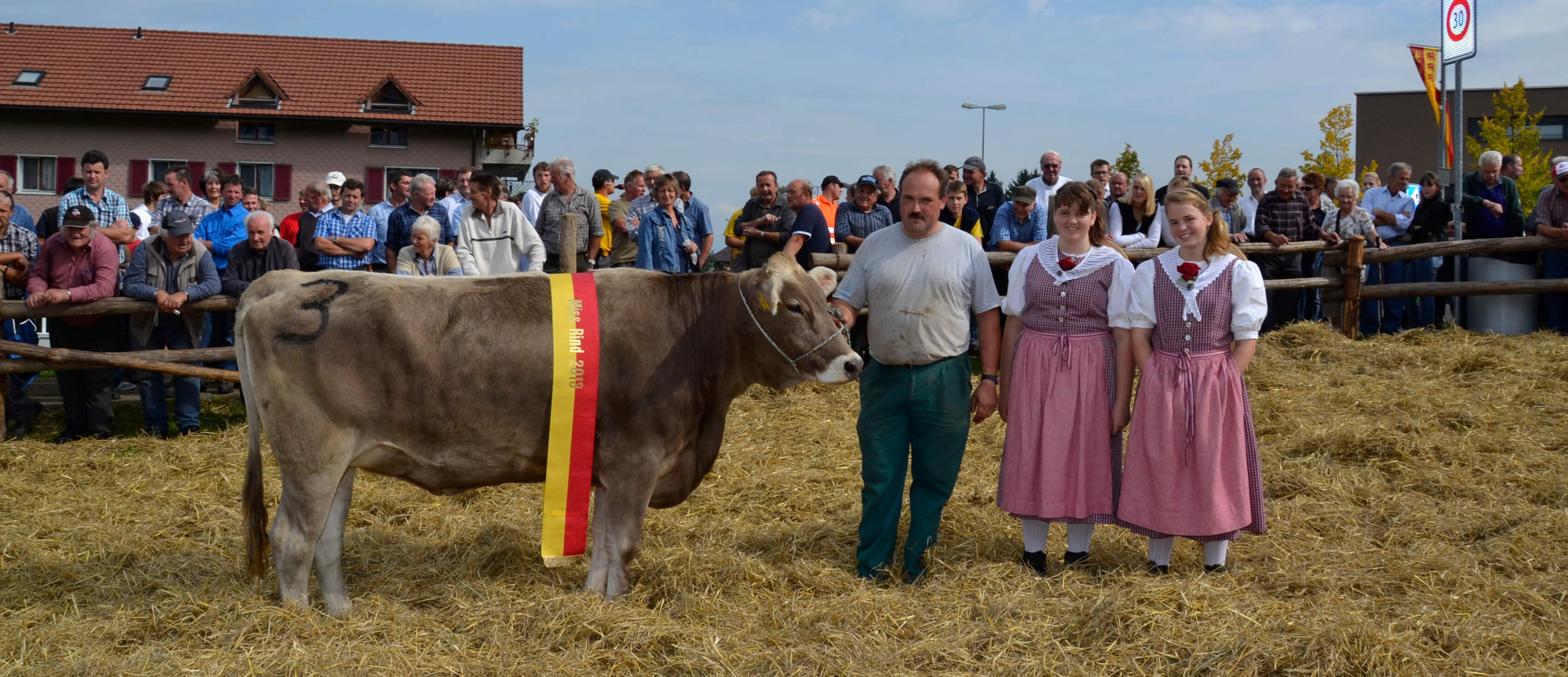 Miss Hoefe Rind 2013, Janett, Mettler Andy, Aesch, Schindellegi
