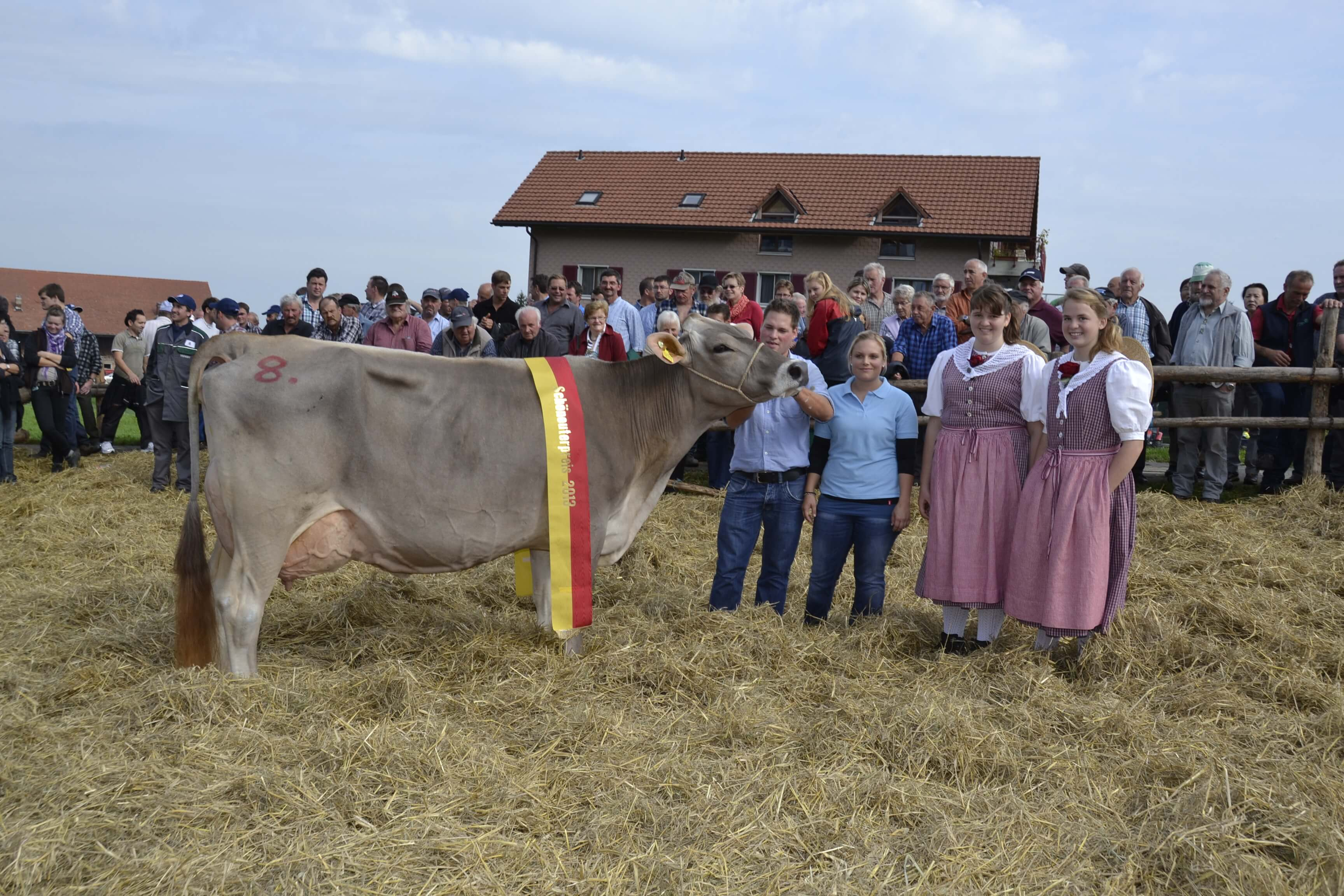 Schoeneuter aeltere Kuehe, Elke, Schatt Armin, Bleiken, Feusisberg
