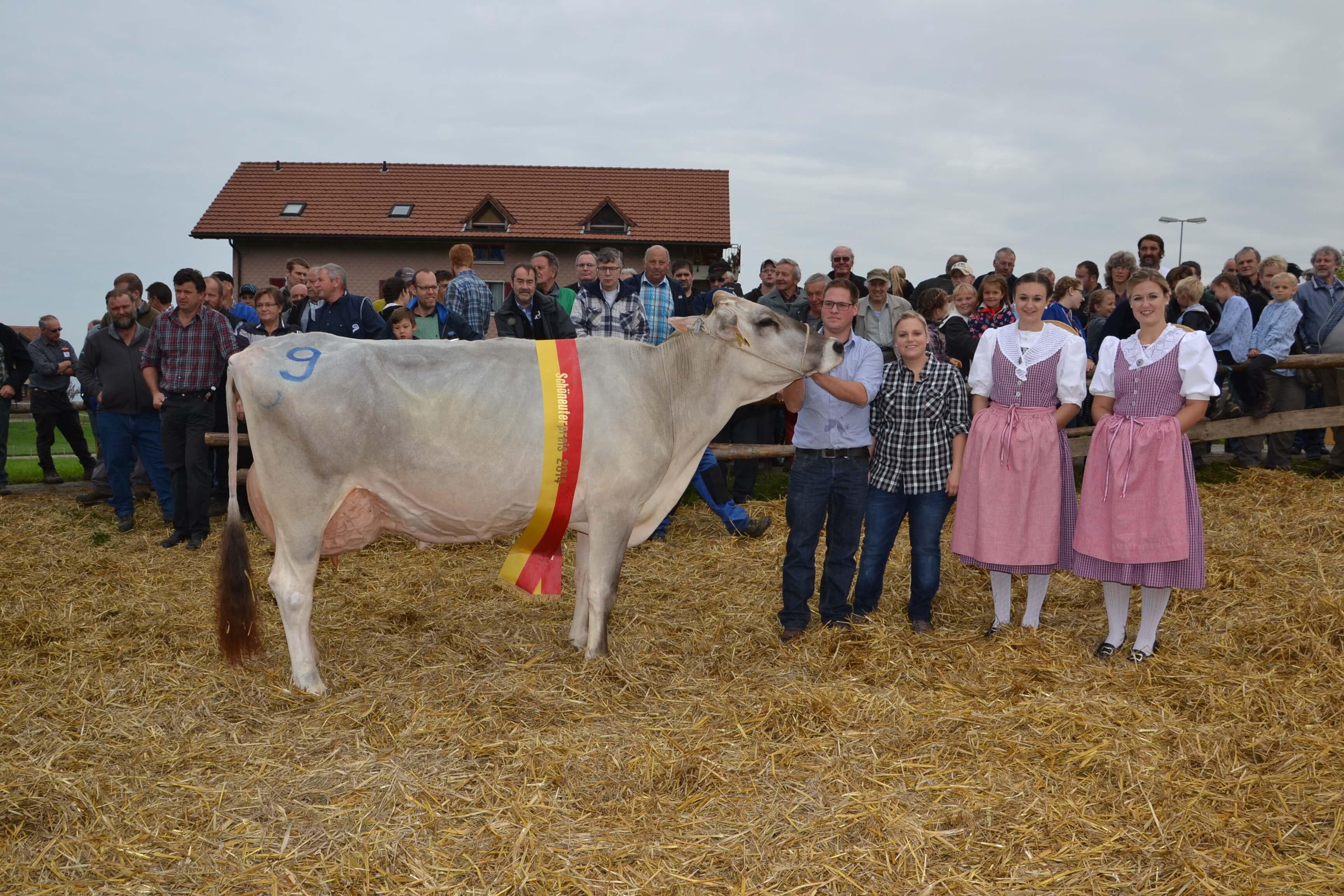 Miss Hoefe 2014, Walessa, Schatt Armin, Bleiken, Feusisberg (gross)