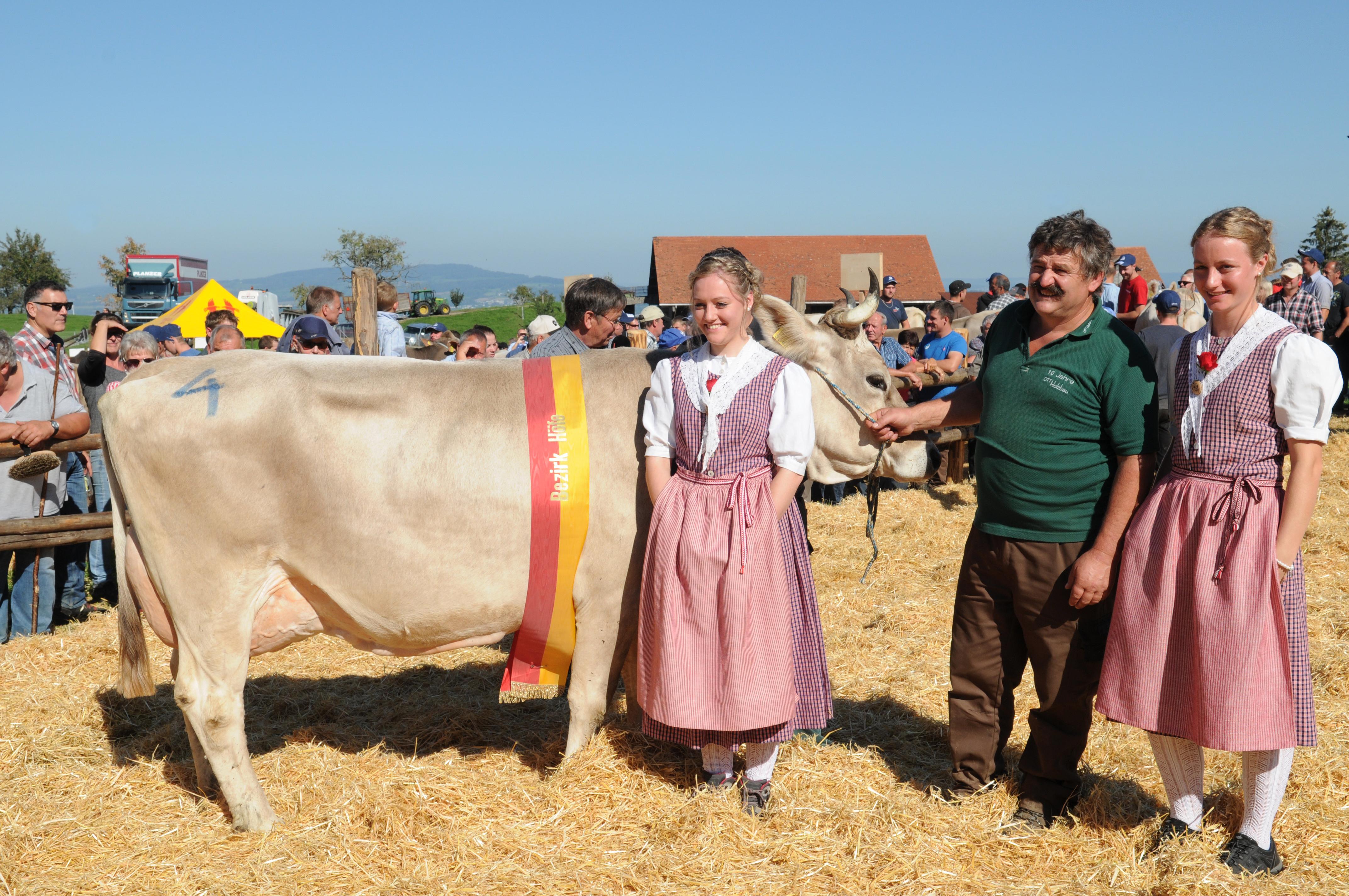Schöneuter mittlere Kühe: Merit, Ruhstaller Franz + Patrick, Wollerau